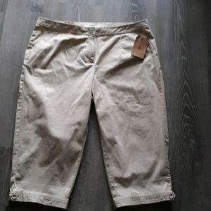Pants - Talbots Chino 98%cotton size 16 WP NWT